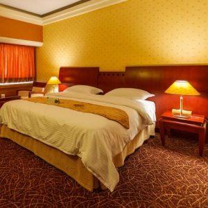 Book Shiraz Hotels - Booking Iran Hotels - Homa Hotel Shiraz