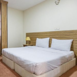 Book Shiraz Hotels - Booking Iran Hotels - Nasirolmolk Hotel Shiraz